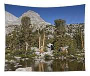 Peaceful Retreat Tapestry