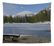 Peaceful Rocky Mountain National Park Tapestry