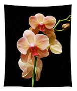 Peach Orchids Tapestry