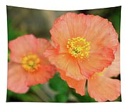 Peach Poppies Tapestry