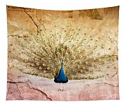 Peacock Bird Textured Background Tapestry