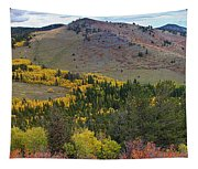 Peak To Peak Highway Boulder County Colorado Autumn View Tapestry