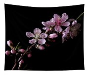 Peach Tree Blossum Tapestry