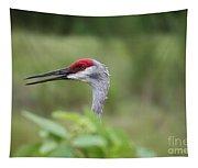 Peek-a-boo Sandhill Crane Tapestry