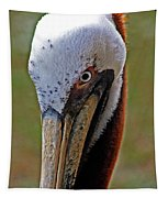Pelican Head Tapestry
