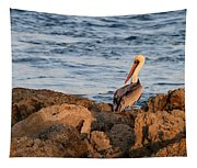 Pelican On The Rocks Tapestry