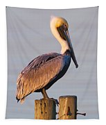 Pelican Perch Tapestry