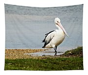 Pelican Pose Tapestry