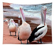 Pelicans At Pearl Beach 5.2 Tapestry