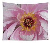 Peonie In Pink Tapestry