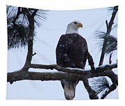 Perched And Proud  Tapestry