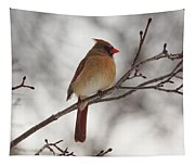 Perched Female Red Cardinal Tapestry