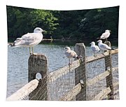 Perched Gulls Tapestry