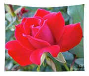 Perfect Form - Knock Out Rose Tapestry