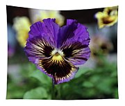 Perfect Pansy  Tapestry
