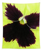 Perfectly Pansy 05 Tapestry