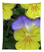 Perfectly Pansy 12 Tapestry