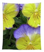 Perfectly Pansy 13 Tapestry