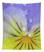 Perfectly Pansy 16 Tapestry