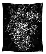 Petite Noir Petals Tapestry
