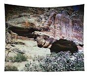 Petra, Transjordan: Cave Tapestry