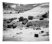 Petrified Forest National Park #3 Tapestry