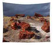 Petrified Forest National Park Tapestry