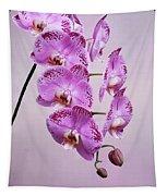 Phalaenopsis Lianher Happy Dancer Tapestry