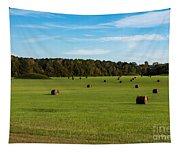 Pharr Mounds - Natchez Trace Tapestry