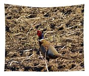 Pheasant On The Move Tapestry