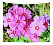 Phlox Beside The Road Tapestry
