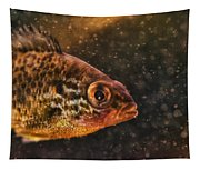 Pices In Aquarium Tapestry