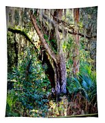 Picnic Time In Florida Tapestry