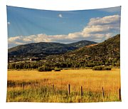 Picturesque View Of Steamboat Springs Colorado Tapestry