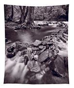 Pigeon Forge River Great Smoky Mountains Bw Tapestry