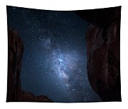 Pike National Forest Milky Way Tapestry