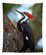 Pilated Woodpecker Tapestry