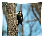 Pileated Billed Woodpecker Pecking 3 Tapestry