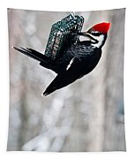 Pileated Billed Woodpecker Pecking 6 Tapestry