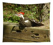 Pileated Woodpecker1 Tapestry