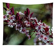 Pin Cherry Blossoms Tapestry