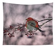 Pine Grosbeak Tapestry