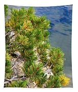 Pine Needles Over Water Tapestry