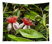 Pineapple Guava Tapestry