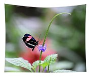 Pink And Blue Butterfly Tapestry