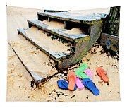 Pink And Blue Flip Flops By The Steps Tapestry