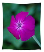 Pink And White Flower Tapestry