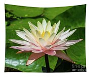 Pink And White Water Lily Tapestry