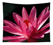 Pink Beauty Tapestry