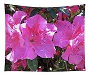 Pink Bevy Of Beauties Tapestry